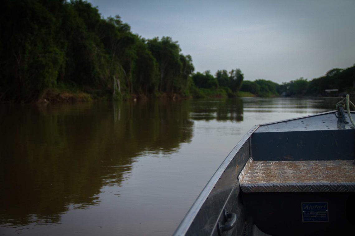 PantanalV2-13